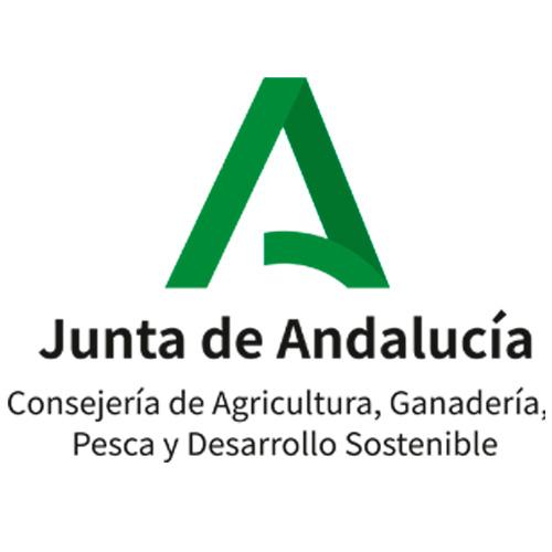junta-geotur
